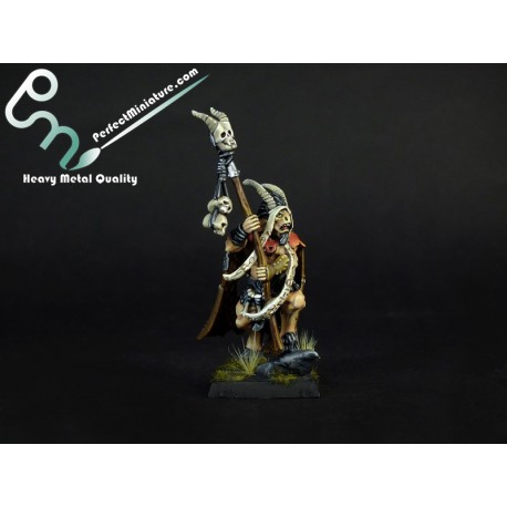 Beastmen Great Bray-Shaman (1 figure)